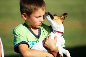 puppy-love-930929-m